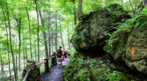 9 Easy Hikes To Add To Your Outdoor Bucket List In Buffalo
