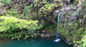 This Underrated Trail In Hawaii Leads To A Hidden Turquoise Swimming Hole