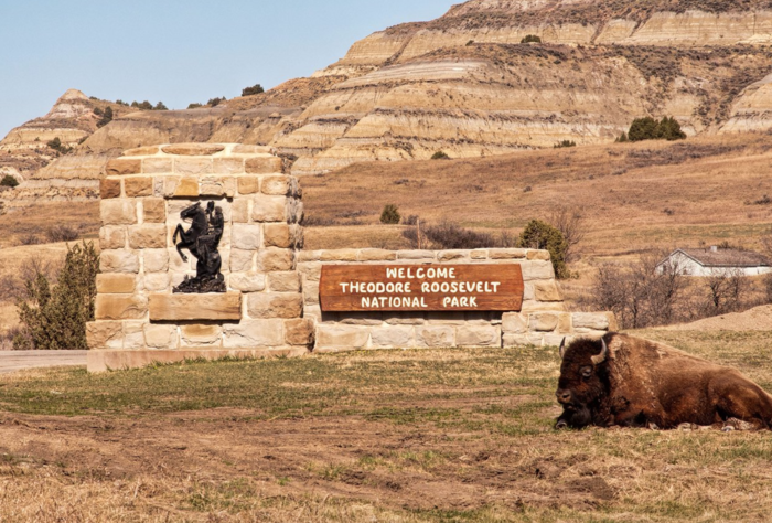 9 facts about the theodore roosevelt national park in