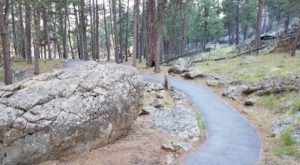 This Quaint Little Trail is the Shortest and Sweetest Hike in Wyoming