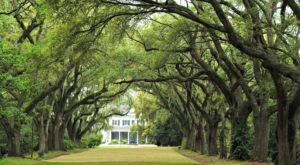 This Is The Oldest Place You Can Possibly Go In South Carolina And Its History Will Fascinate You