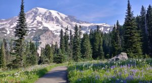 9 Totally Kid-Friendly Hikes In Washington That Are 1 Mile And Under