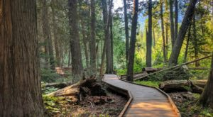 9 Totally Kid-Friendly Hikes In Montana That Are 1 Mile And Under