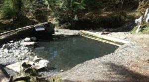 Everyone in Washington Must Visit This Epic Natural Spring As Soon As Possible