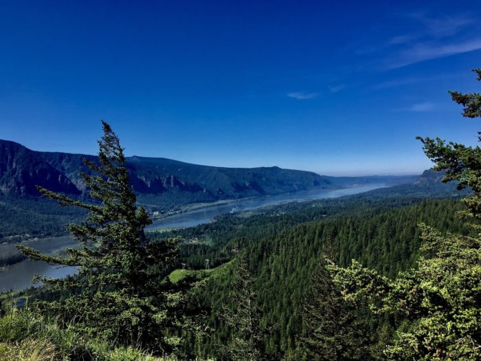 8 Most Magical Hiking Trails In Washington For Spring