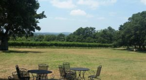 This One-Of-A-Kind Winery Near Austin Is Located In The Most Unforgettable Setting