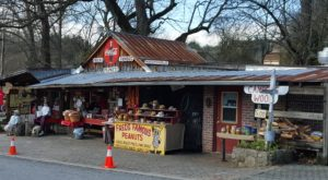 The Historic Roadside Snack Shop In Georgia That Will Offer You a Dose of Nostalgia
