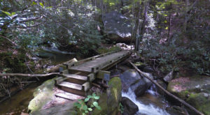 The Trail In South Carolina That Will Lead You On An Adventure Like No Other