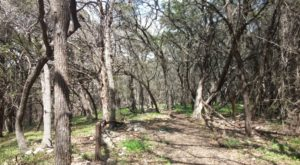 Not Many People Know About This Beautiful Hiking Trail Hiding In South Austin
