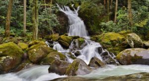 10 Easy And Beautiful Spring Hikes Everyone In North Carolina Will Love