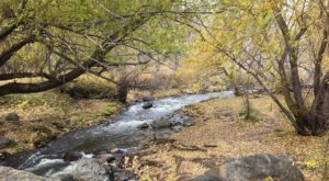 5 Totally Kid-Friendly Hikes Around Denver That Are 1 Mile And Under