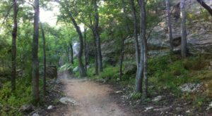 This Underrated Trail Near Austin Takes You Straight To Four Amazing Springs