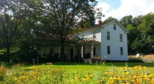 There's An Incredible B&B Hiding In The Middle Of This Ohio Forest And You Need To Visit
