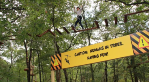 Most People Don't Know This New Jersey Zoo And Adventure Park Even Exists