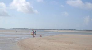 The Amazing North Carolina Sand Dollar Beach You Can Only Get To By Boat