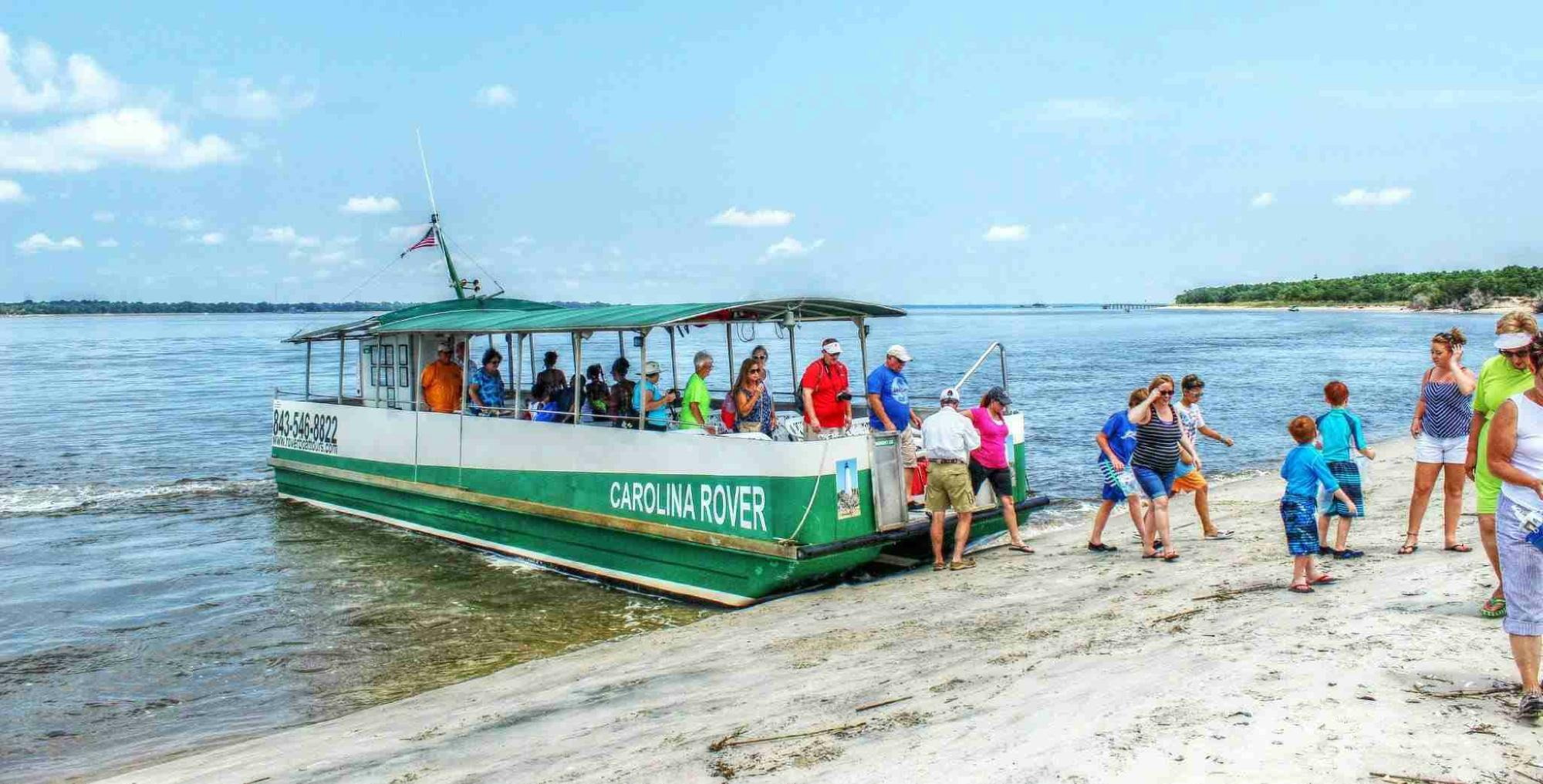 Dolphin Boat Tour Charleston Sc