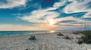 Here's The Very Best Beach In America To Search For Seashells