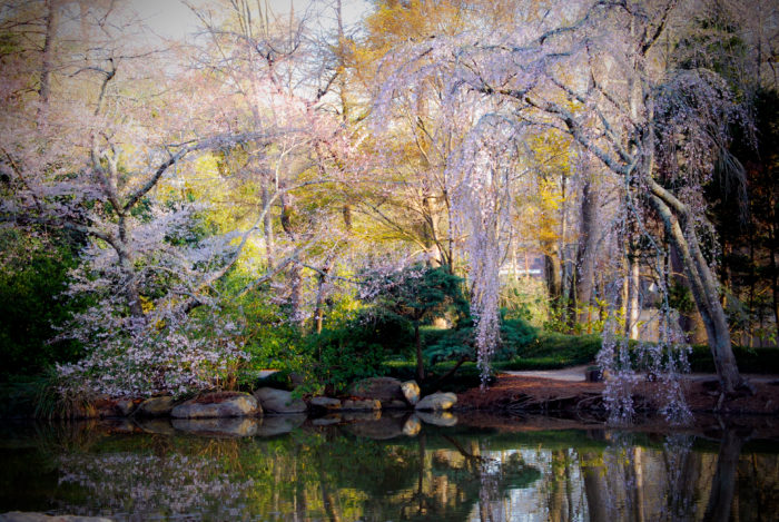 9 Most Beautiful Picture Perfect Places In Alabama To Visit During Spring
