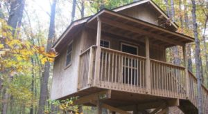 This Treehouse Campground In Maryland May Just Be Your New Favorite Destination