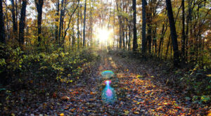 The Spooky Indiana Hike That Will Lead You Somewhere Deserted