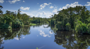 You'll Love This Overnight Adventure In Florida When You Can Camp Right On The River
