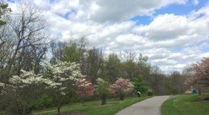 The Secret Garden Hike Near Cincinnati Will Make You Feel Like You're In A Fairytale