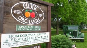 You'll Have Loads Of Fun At This Pick-Your-Own Fruit Farm In Delaware