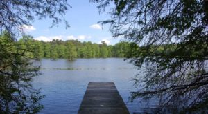 The Secluded Pond In Delaware That's One Of The World's Last Great Places