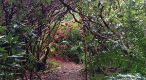 The Secret Garden Hike In Oregon Will Make You Feel Like You're In A Fairytale