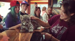 There's A Wildlife Park In Oregon That's Perfect For A Family Day Trip