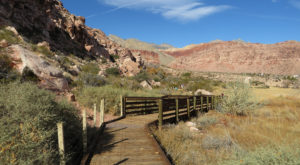This Beautiful Boardwalk Trail In Nevada Is The Most Unique Hike Around