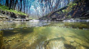 This Outdoor Nature Center May Just Be The Best Kept Secret In Cincinnati