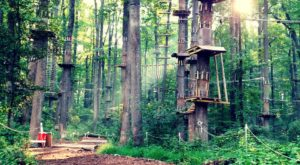This Family-Friendly Adventure Park In Maryland Will Bring Out The Explorer In You
