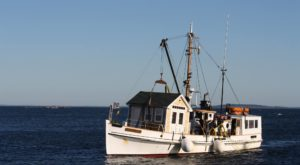 The One Of A Kind Ferry Boat Adventure You Can Take In Maine