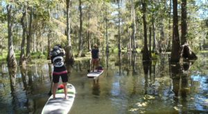 The Unique Outdoor Activity In Louisiana That's Fun For The Whole Family