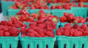 Everyone In Maine Must Visit This Epic Farmers Market At Least Once