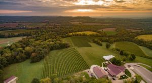 10 Small Town Wineries In Missouri You'll Want To Explore