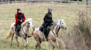 This Moonlight Horseback Tour In Tennessee Is Like Nothing You've Experienced Before