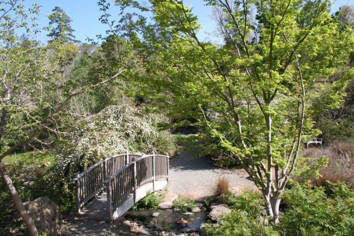 quarryhill botanical gardenfacebook - Quarryhill Botanical Garden