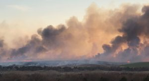 Wildfires Are Ripping Through Parts Of Oklahoma And It's Truly Devastating