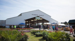 A Trip To This Gigantic Farmers Market in South Carolina Will Make Your Weekend Complete