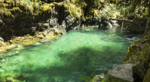 The Hike To This Gorgeous Oregon Swimming Hole Is Everything You Could Imagine