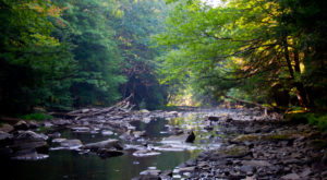 7 Lesser-Known State Parks Near Pittsburgh That Will Absolutely Amaze You