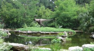 The Mystical Place in Austin Where Dinosaurs Once Roamed