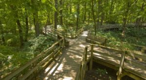 This Beautiful Boardwalk Trail In Nebraska Is The Most Unique Hike Around