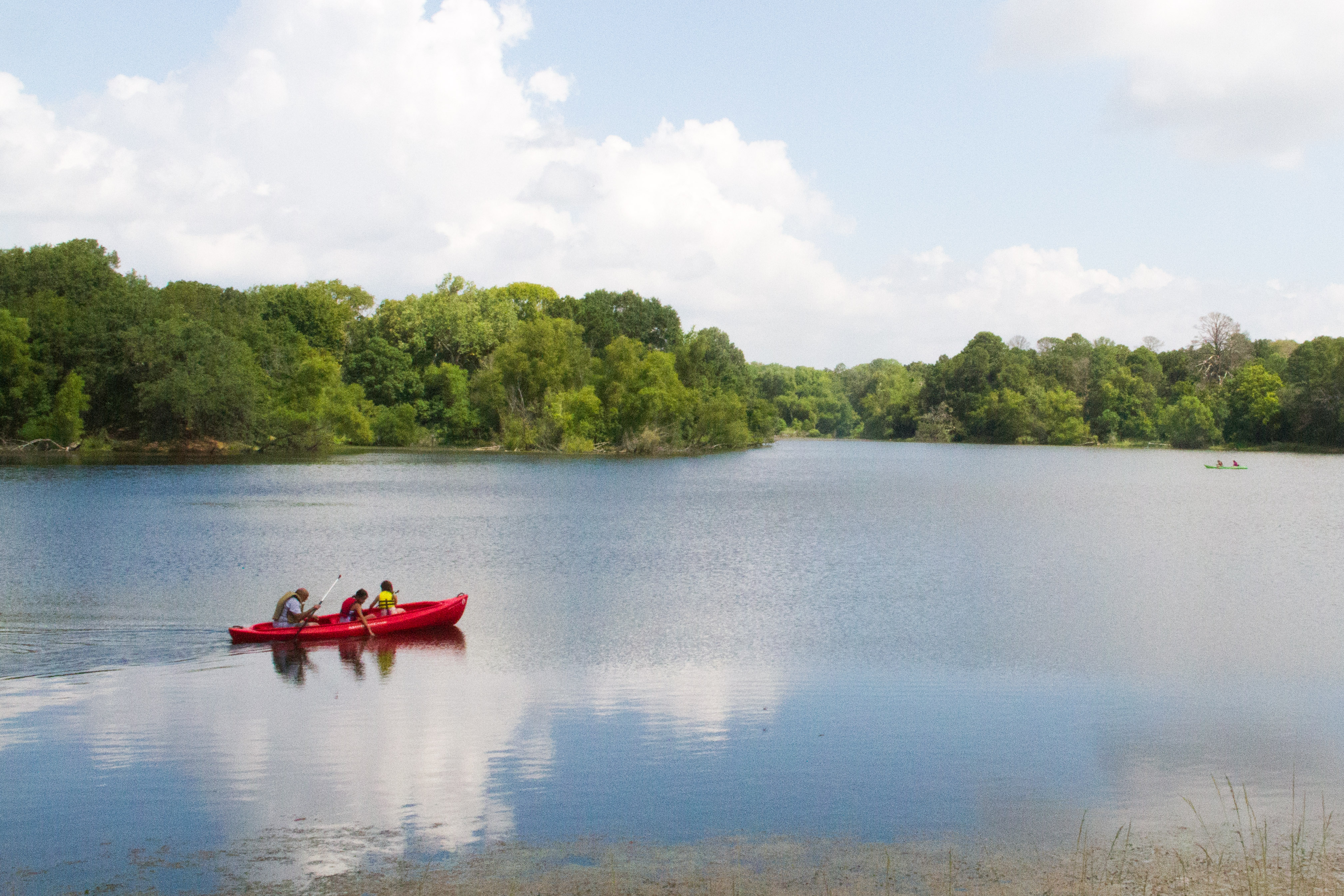 Buescher State Park Is The Best Underrated State Park Near ...
