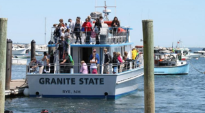 Take This Whale Watching Tour In New Hampshire For An Unforgettable Adventure