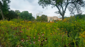 This Little Known Natural Oasis Is Hiding In Milwaukee And You're Going To Love It