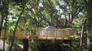 This Treehouse Resort In Iowa May Just Be Your New Favorite Destination
