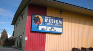 Visit This Natural History Museum In Alaska For The Perfect Day Trip